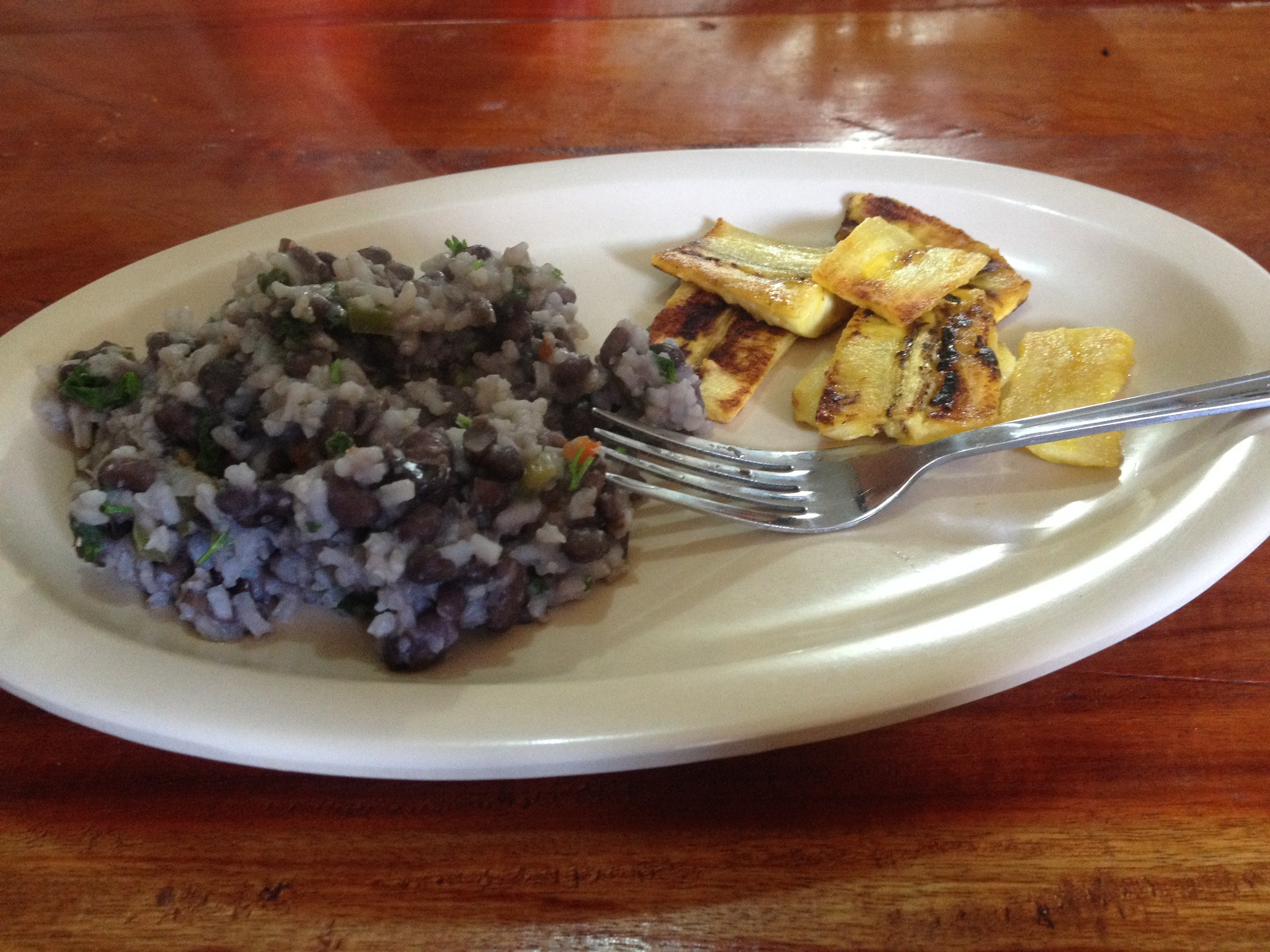 Our first Costa Rican Dish Made by Laura, black beans, onions, rice, cilantro,  and fried plantains