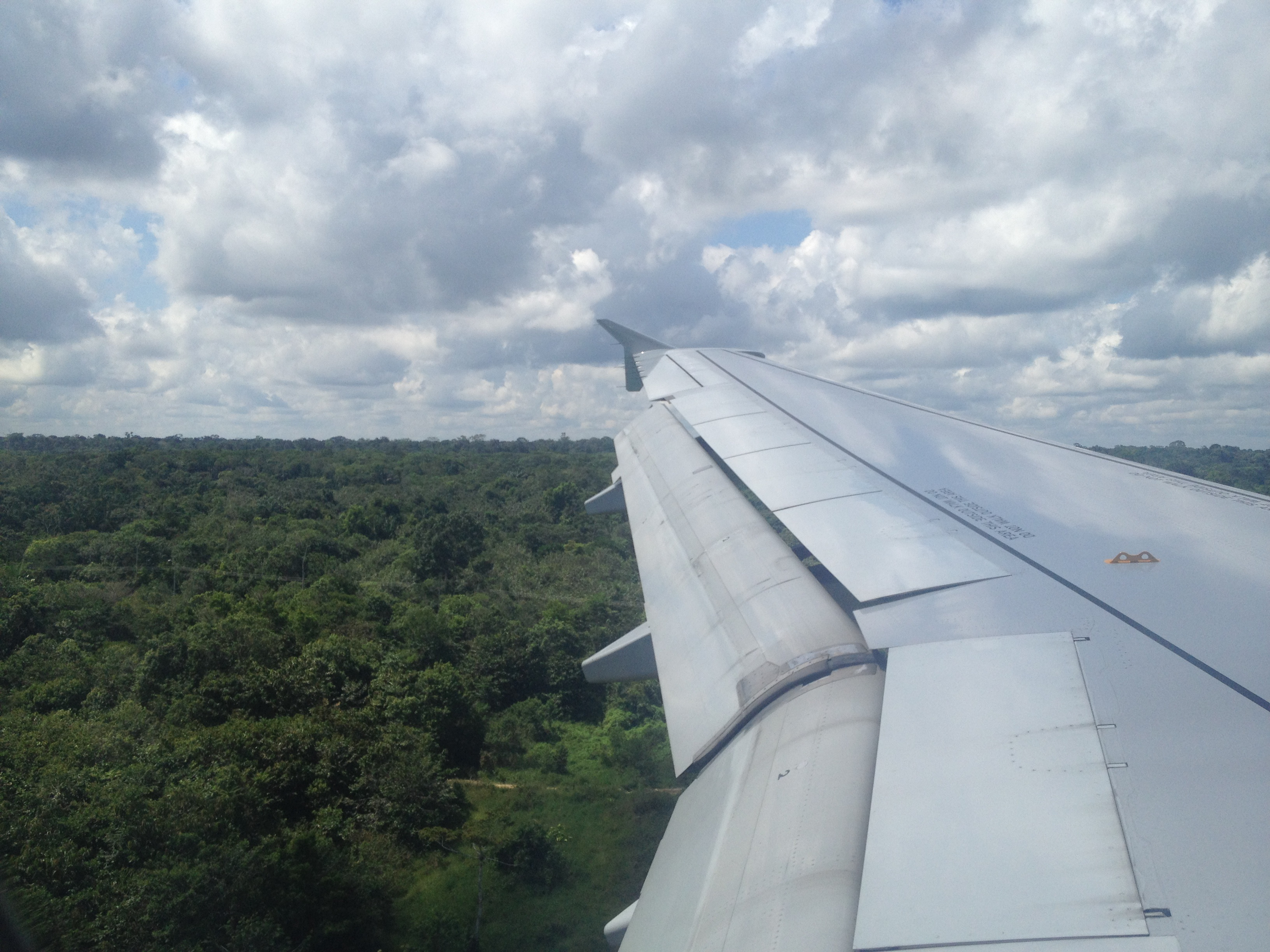 First sight of the amazon